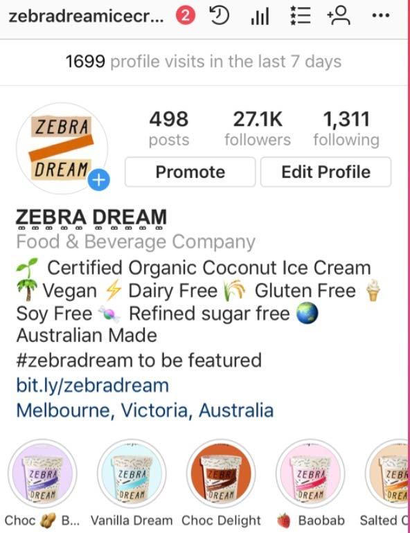 come ottimizzare bio instagram